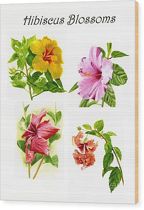 Hibiscus Poster With Script Wood Print by Sharon Freeman