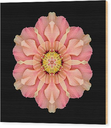 Hibiscus Rosa-sinensis I Flower Mandala Wood Print by David J Bookbinder