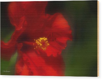 Wood Print featuring the photograph Hibiscus Softly 2 by Travis Burgess