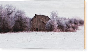 Hidden Barn Wood Print by Julie Hamilton