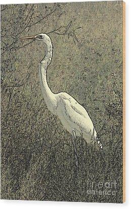 Hidden Egret Wood Print by Carol Groenen