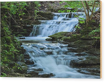 Wood Print featuring the photograph Hidden Falls by Julie Andel