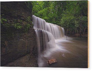Hidden Falls Nerstrand Mn Wood Print