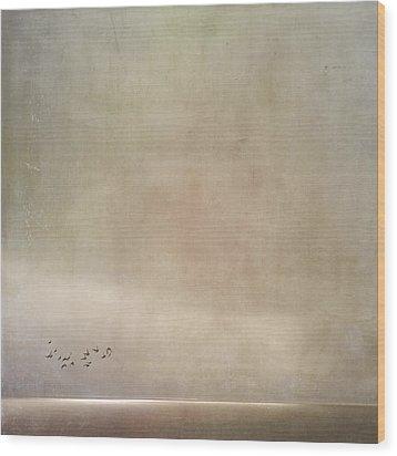 Hidden Horizon Wood Print