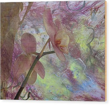 Hidden Orchid Wood Print by Donna Walsh