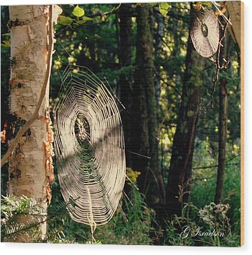 Wood Print featuring the photograph Hidden Secrets by Gregory Israelson