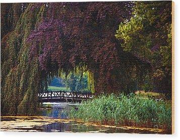 Hidden Shadow Bridge At The Pond. Park Of The De Haar Castle Wood Print by Jenny Rainbow
