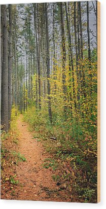 Hidden Valley Wood Print by Bill Wakeley