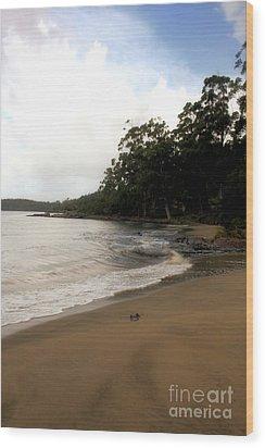 Hide Away Beach Wood Print