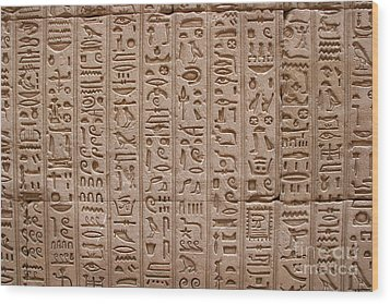 Hieroglyphs At The Temple Of Philae Wood Print by Stephen & Donna O'Meara
