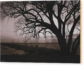Wood Print featuring the photograph High Cliff Beauty by Lauren Radke