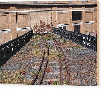 High Line Spur Wood Print by Rona Black