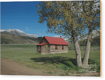 High Lonesome Ranch Wood Print by Jerry McElroy