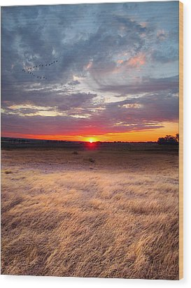High Plains Sunrise Wood Print by Ric Soulen