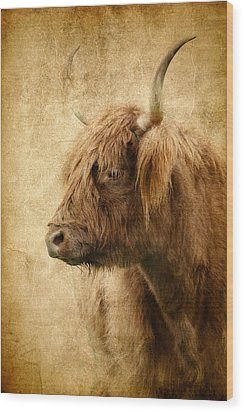 Highland Bull Wood Print by Athena Mckinzie