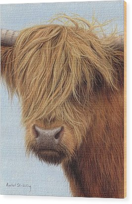 Highland Cow Painting Wood Print by Rachel Stribbling