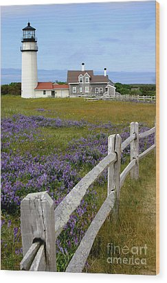 Highland Lighthouse Wood Print