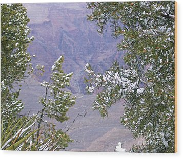 Wood Print featuring the photograph Highlighting Snow by Roberta Byram