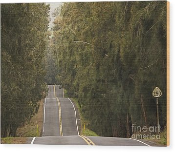 Highway 250 Wood Print by Inge Riis McDonald