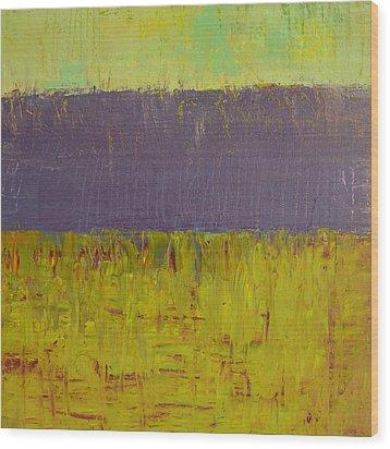 Highway Series - Lake Wood Print by Michelle Calkins