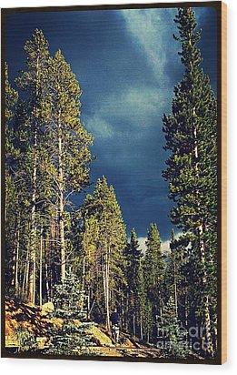 Hike In The Woods Wood Print by Garren Zanker