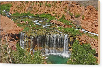 Hike Into Havasupai  Wood Print by Michael J Bauer