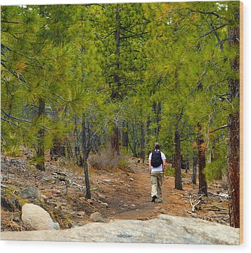 Hike On 2 Wood Print by Brent Dolliver