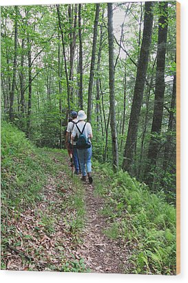 Hiking Group Wood Print by Melinda Fawver