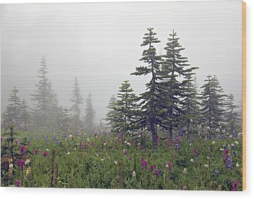 Hiking In The Clouds Wood Print