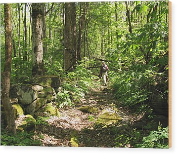 Hiking Off Trail Wood Print by Melinda Fawver