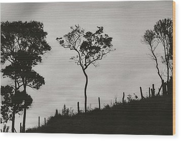Hill Wood Print by Amarildo Correa