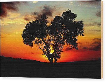 Hill Country Darkness Wood Print by David  Norman