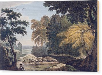 Hill Village In The District Of Bauhelepoor Wood Print by William Hodges