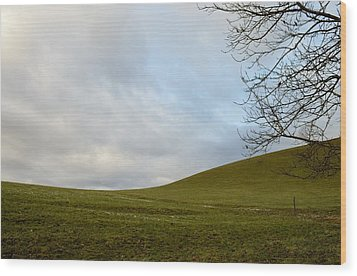 Wood Print featuring the photograph Hills And Sky by Felicia Tica