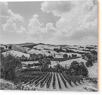 Hills Of Tuscany Wood Print by Clint Brewer