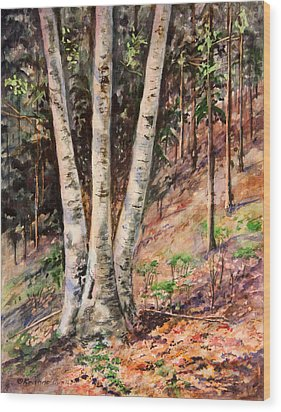 Hillside Birch Wood Print by Kristine Plum