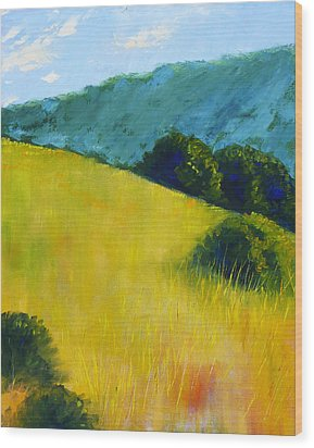 Hillside Prairie Wood Print by Nancy Merkle