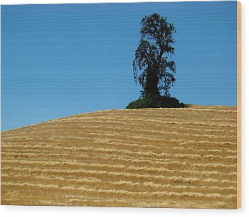 Wood Print featuring the photograph Hillside Protector by Paul Foutz