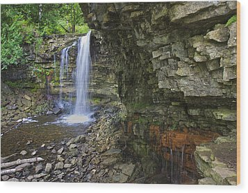 Wood Print featuring the photograph Hilton Falls In Summer by Gary Hall