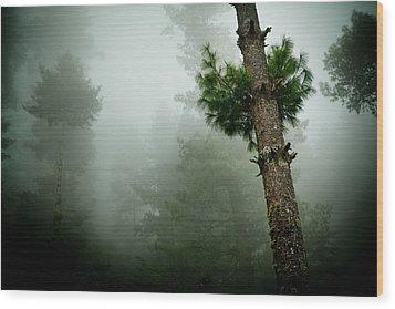 Himalyas Mist Wood Print by Raimond Klavins