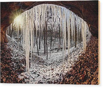 Hinding From Winter Wood Print by Robert Charity