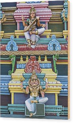 Hindu Temple Deity Statues Wood Print by Tim Gainey