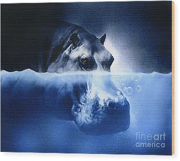 Hippo Wood Print by Robert Foster
