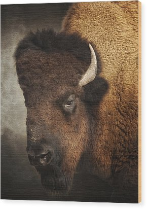 His Majesty Wood Print by Ron  McGinnis