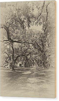 Historic Lane Antique Sepia Wood Print by Steve Harrington