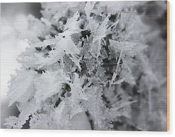 Wood Print featuring the photograph Hoar Frost In November by Ryan Crouse