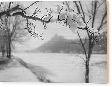 Wood Print featuring the photograph Hoarfrost With Sugarloaf by Kari Yearous