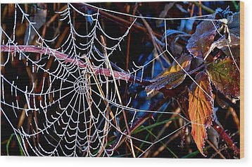Wood Print featuring the photograph Hoary Web by Julia Hassett