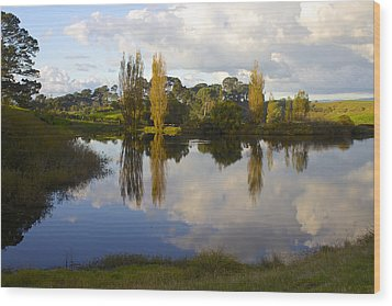 Autumn At Hobbiton Lake New Zealand Wood Print by Venetia Featherstone-Witty