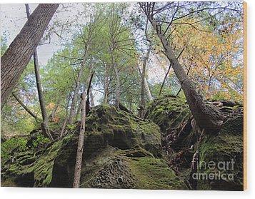 Hocking Hills Moss Covered Cliff Wood Print by Karen Adams